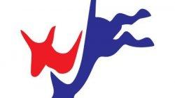 DemDaily: The 2020 Campaign Calendar!