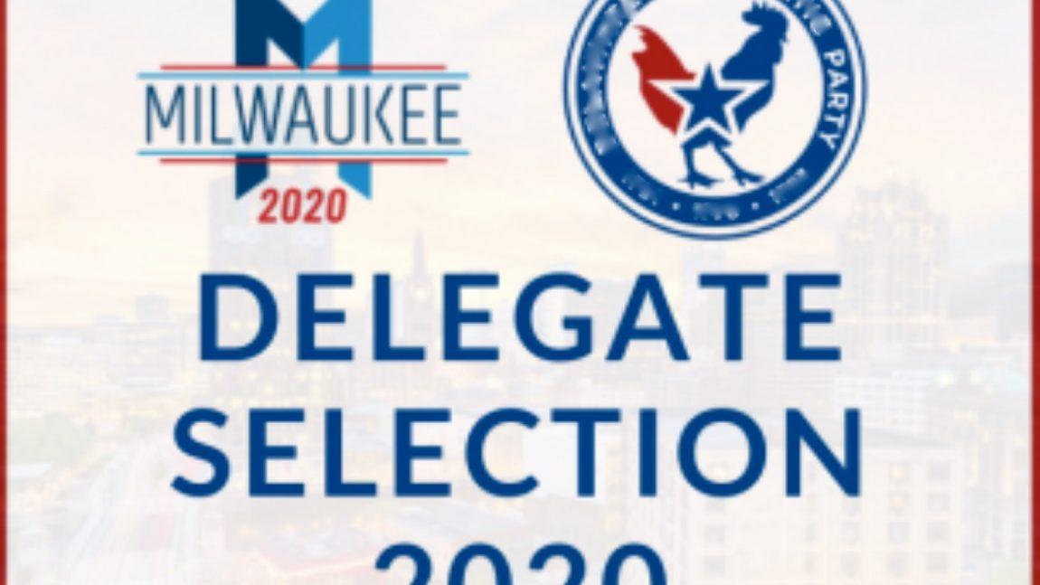 DemDaily: The Delegate Season