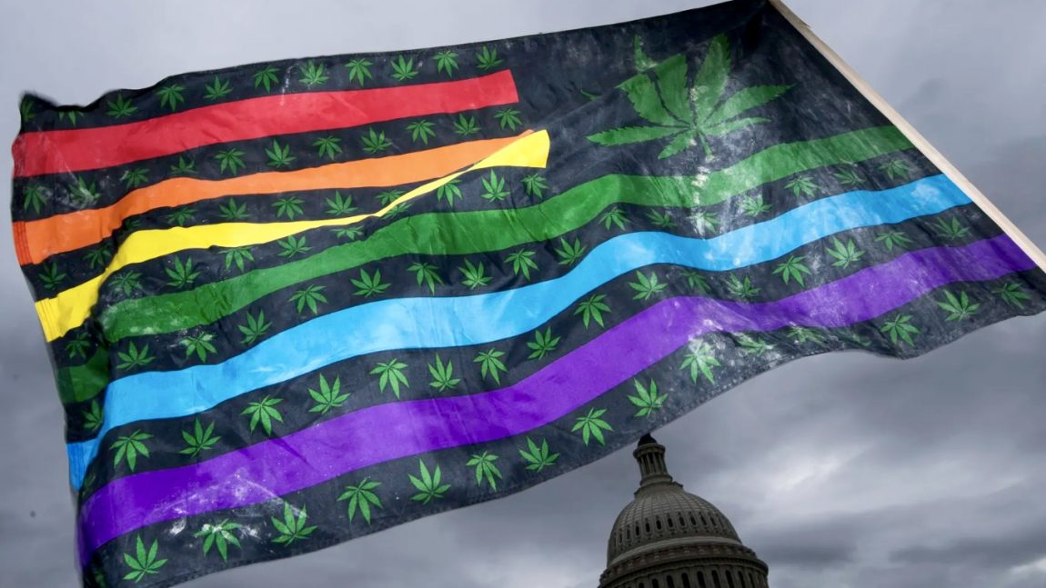 DemDaily: Cannabis: Red State, Blue State