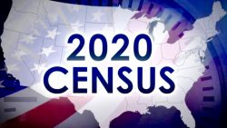 DemDaily: Deciphering The Census. A Snapshot