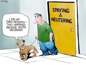 DemDaily: A Little Humor. Our Monthly Roundup!