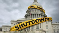 DemDaily: What Happens When a Government Shuts Down?